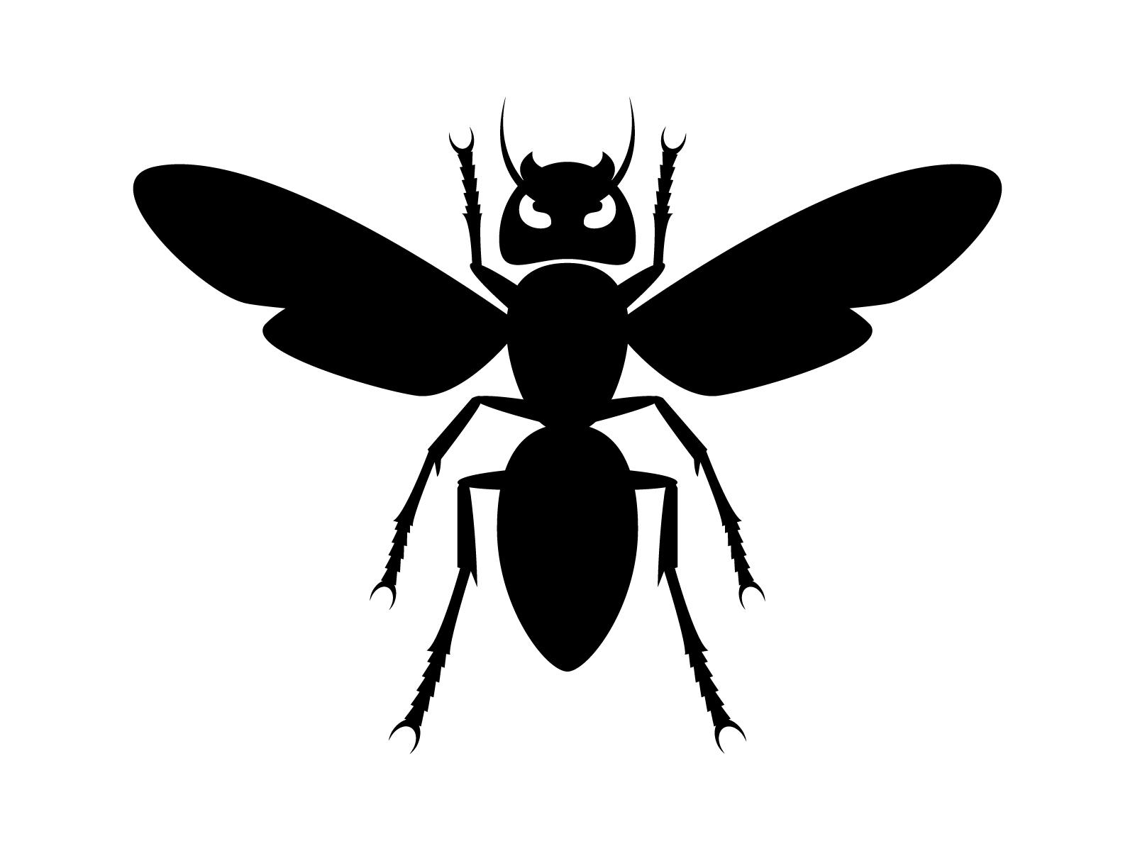 ツチバチのことを知りたい!危険度は?見つけてもソッとしておこう